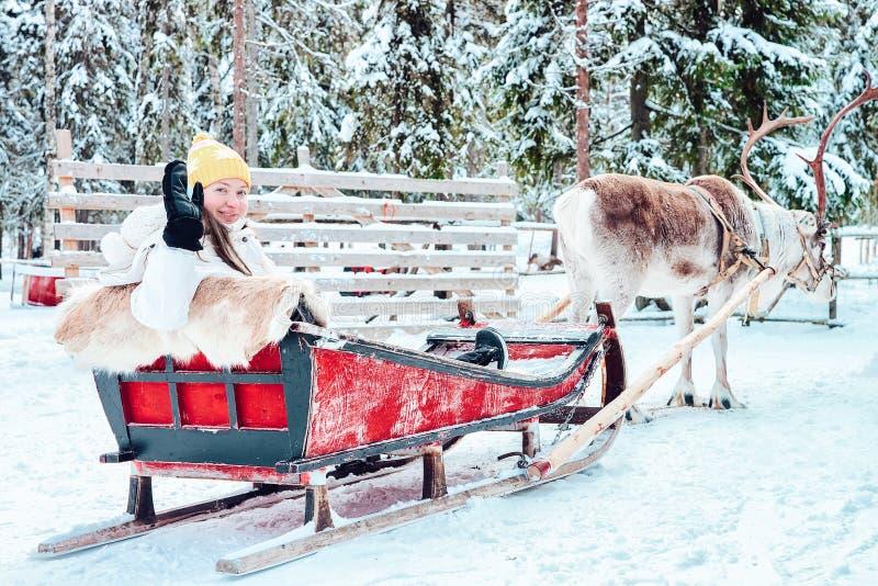 Сани северного оленя катания девушки в Финляндии Лапландии в зиме стоковое изображение