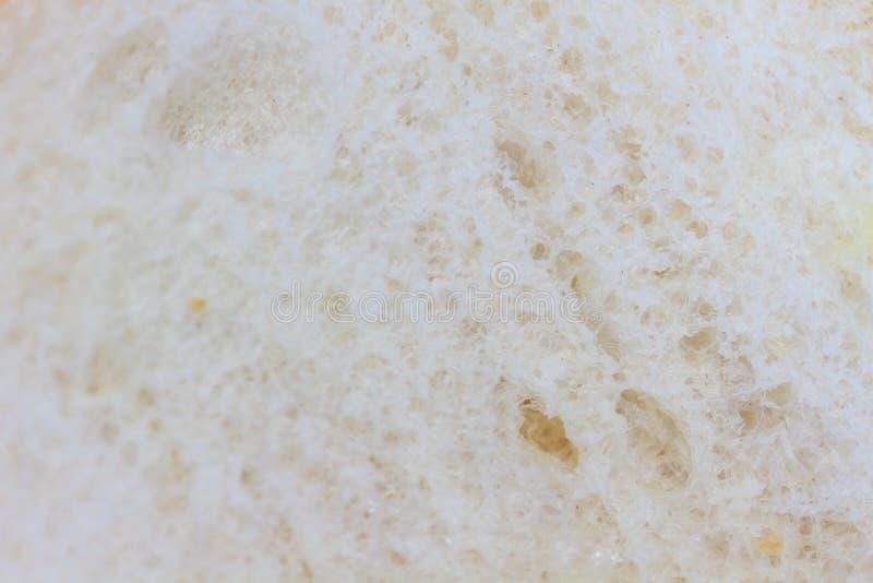 Сандвич на белизне стоковое изображение rf