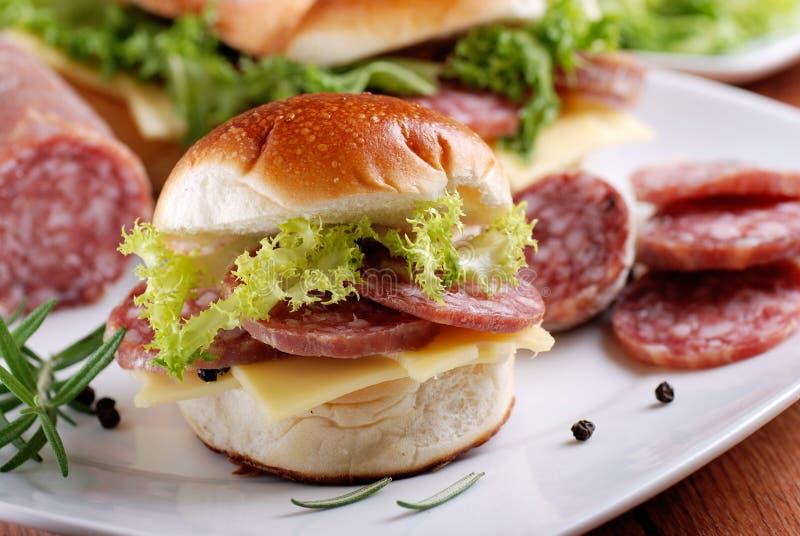 Сандвич с салями стоковые изображения