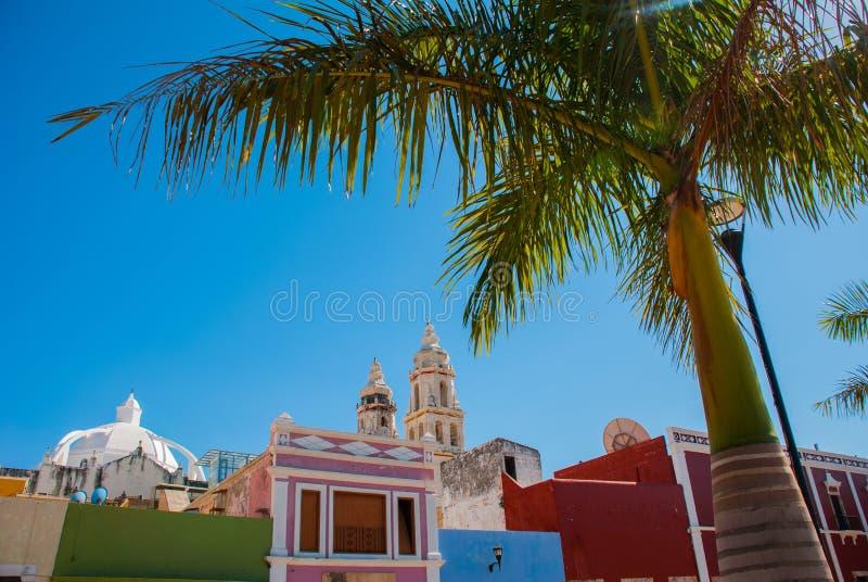 Сан-Франциско de Кампече, Мексика Взгляд домов и пальм, в расстоянии собор Кампече стоковое фото rf