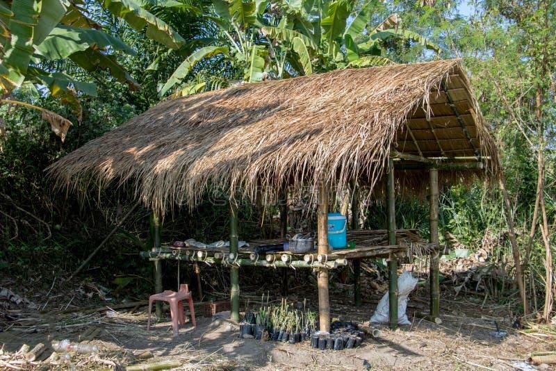 Сарай в тропической природе стоковые фотографии rf