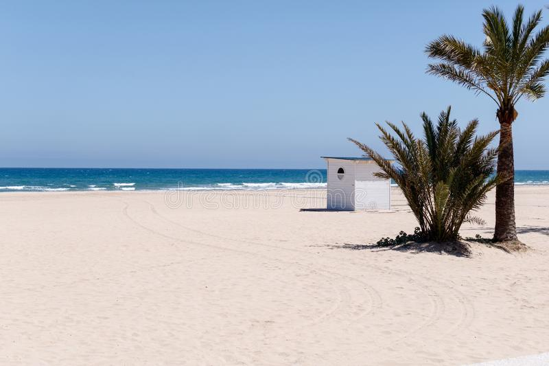 Сарай и пальма на пляже стоковое фото rf