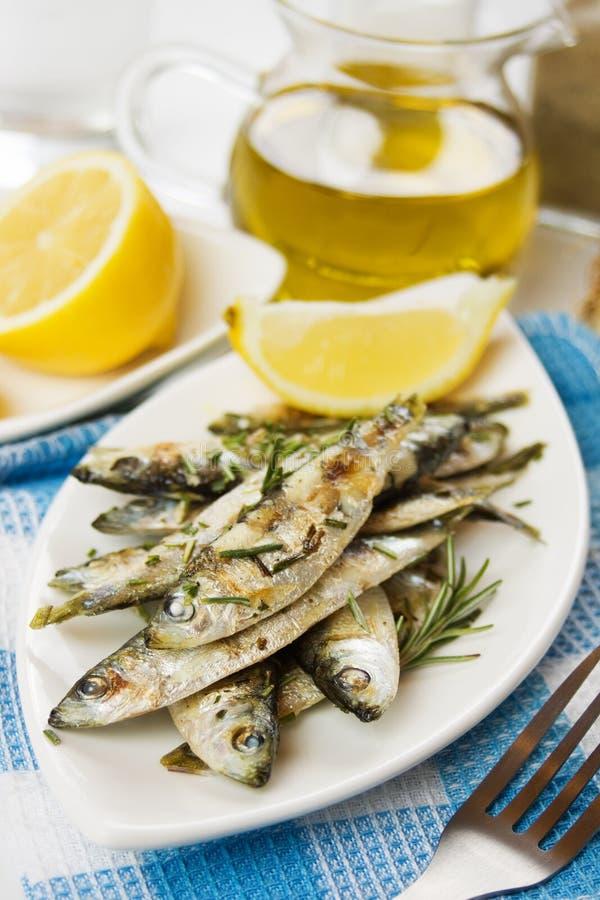 сардина зажженная рыбами стоковые изображения