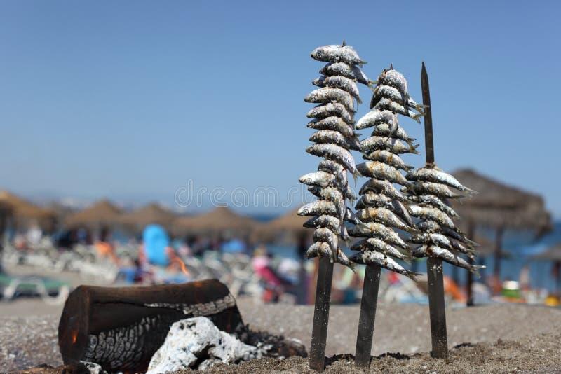 Сардины на решетке стоковые фото