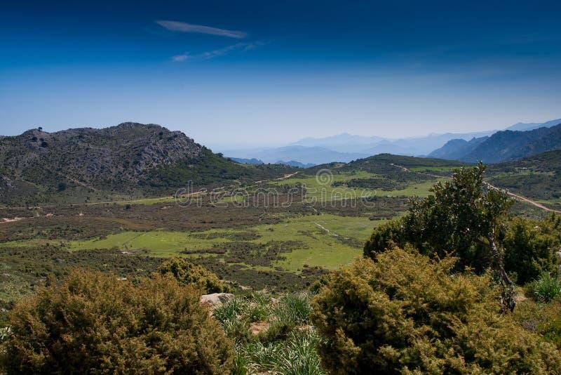 Сардиния между горами и морем - горным велосипедом катания стоковые изображения rf