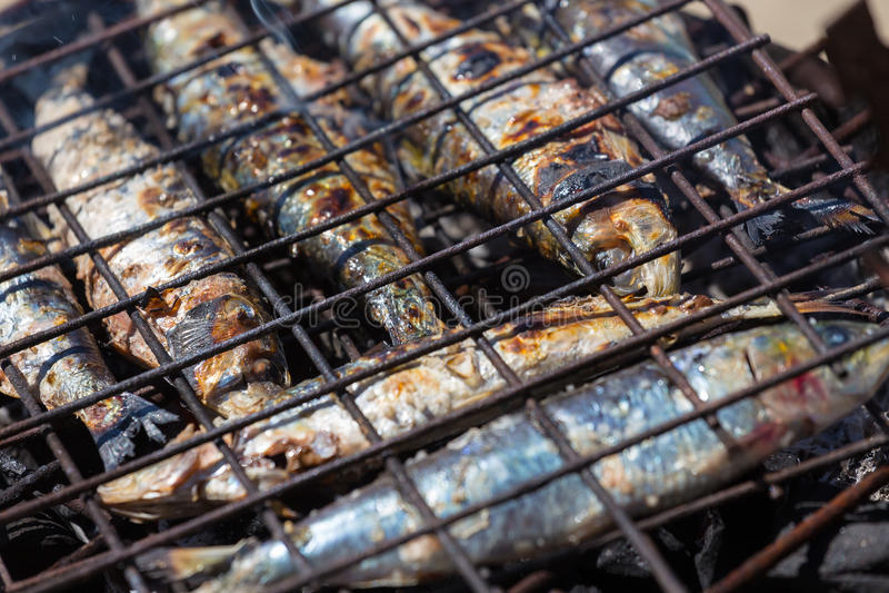 Сардины на гриле стоковое изображение