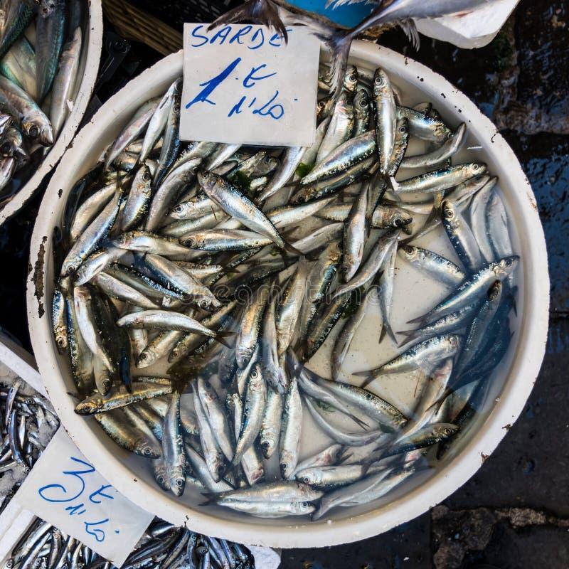 Сардины для сбывания стоковая фотография rf