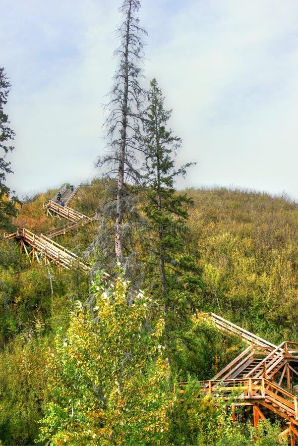 Саскачеван River Valley стоковая фотография rf
