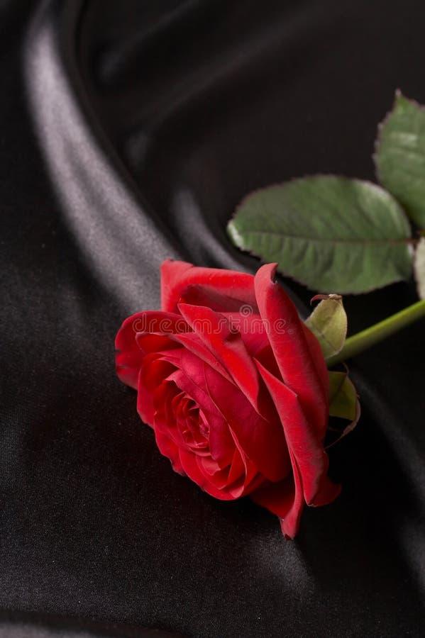 сатинировка красивейшего черного красного цвета розовая стоковые фото