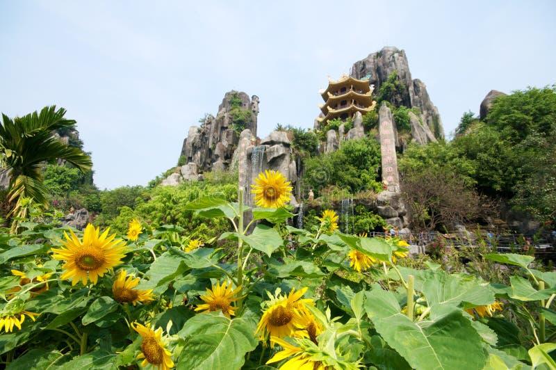 сафари Вьетнам парка стоковые фотографии rf