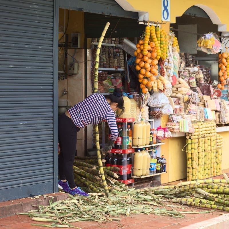 Сахарный тростник чистки в Banos, эквадоре стоковые фото
