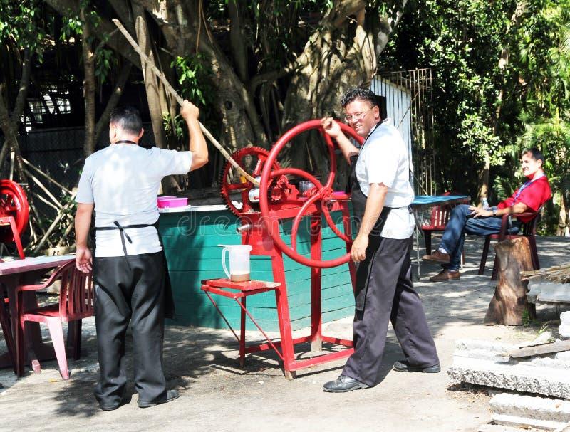 сахар машины Кубы тросточки стоковые фотографии rf