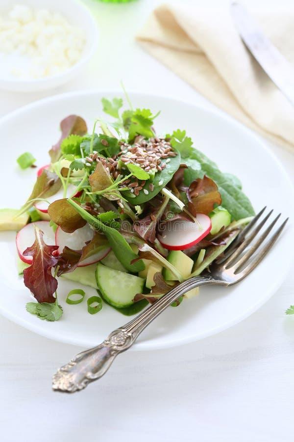 Салат весны с авокадоом стоковые фотографии rf