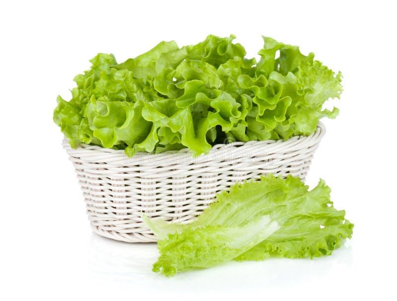 Салат в корзине стоковое изображение rf