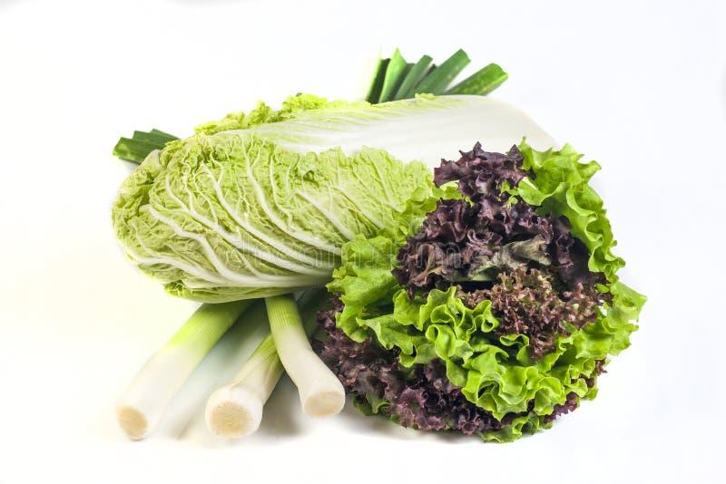 Салат и китайская капуста стоковая фотография