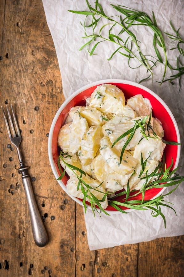 Салат картошки в красном шаре с terragon на белой бумаге, взгляд сверху стоковые фото
