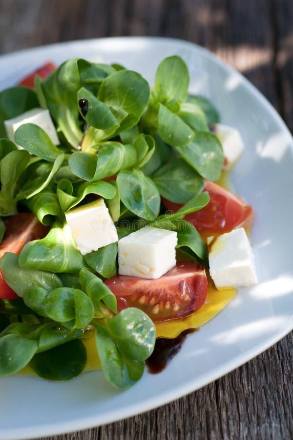 Салат мозоли с сыром стоковая фотография