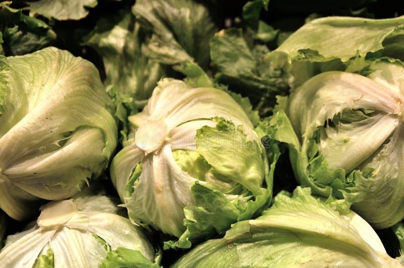 Салат, овощи, еда, ингридиент, органический стоковые изображения rf