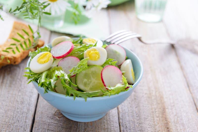 Салат от свежих овощей и яичек триперсток стоковые изображения rf
