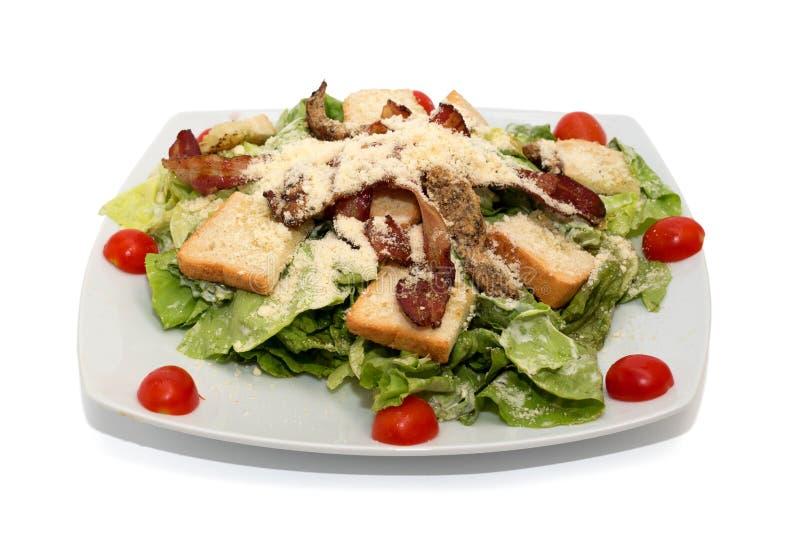 Салат при изолированные мясо и хлеб стоковая фотография rf