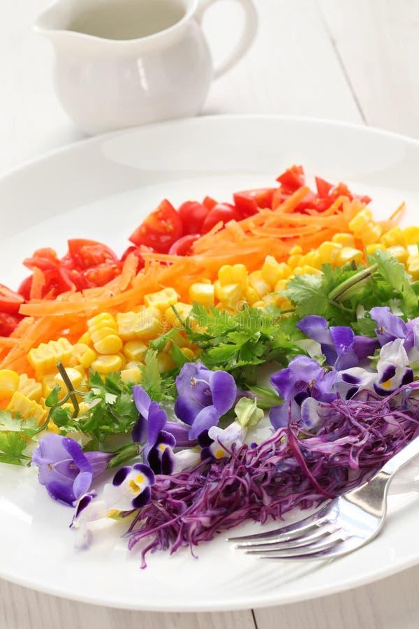 Салат радуги супер стоковые фото