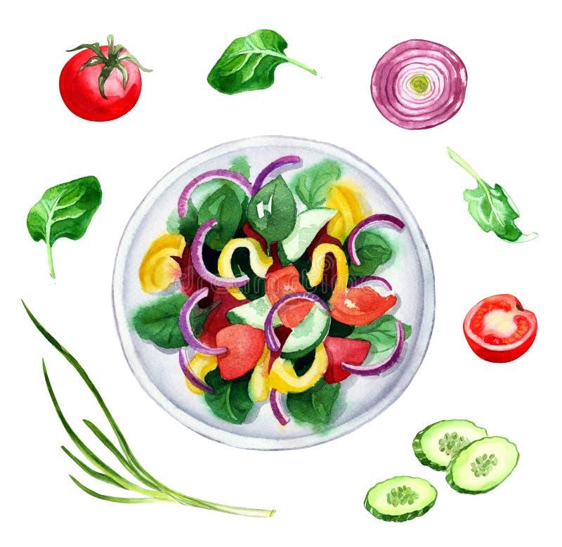 Салат свежего овоща и ingridients, иллюстрация акварели стоковое фото rf