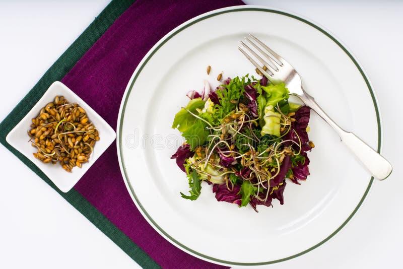 Салат с ростками рож стоковое фото