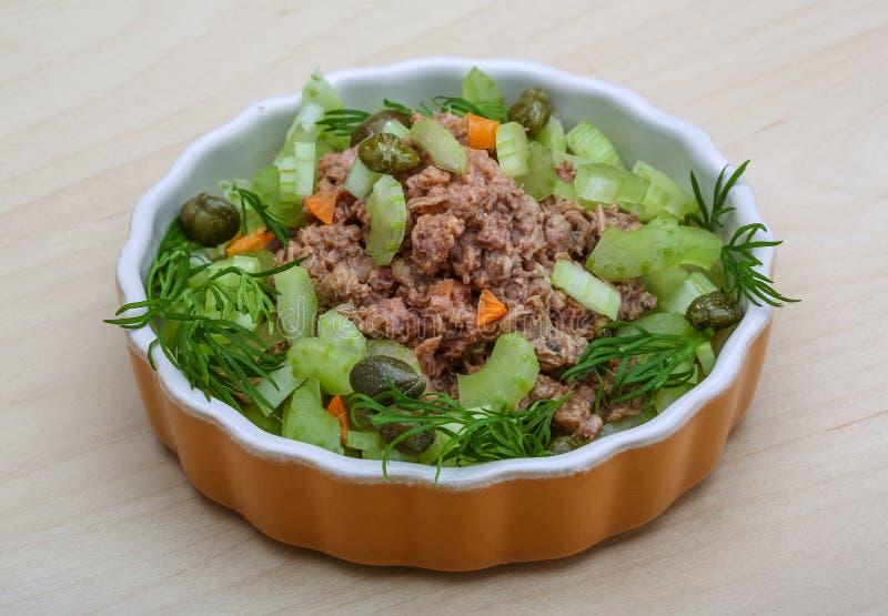 Салат тунца и сельдерея стоковые изображения rf