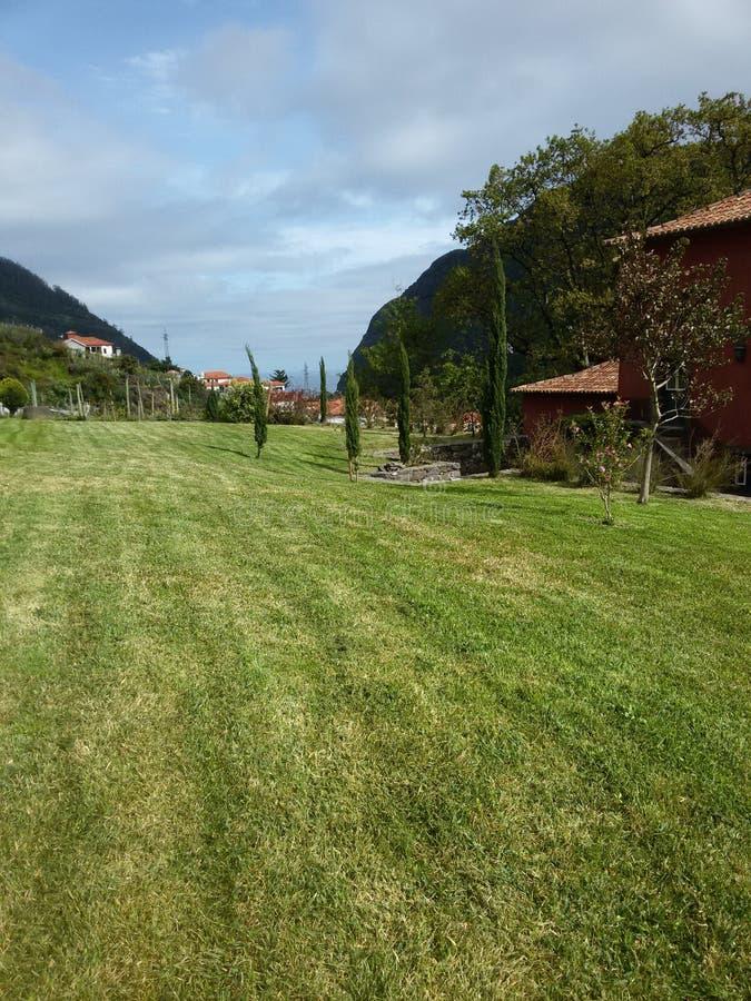 Сад в загородном доме стоковое изображение
