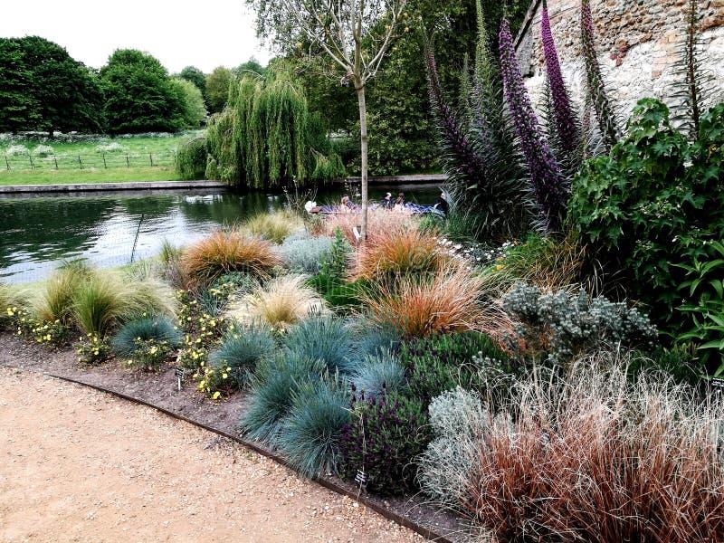 Сад в Кембриджском университете стоковое фото rf