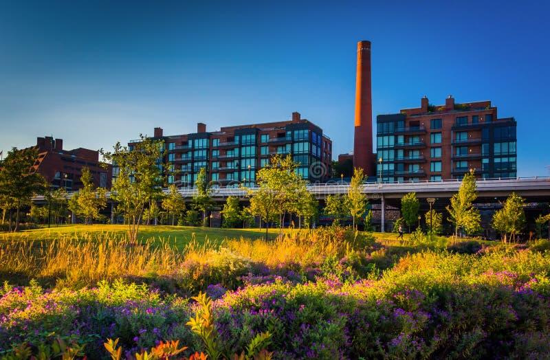Сад и взгляд дымовой трубы в Джорджтауне, Вашингтоне, DC стоковые изображения