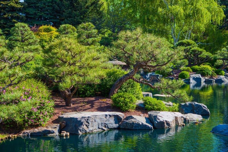 Сад и пруд Rockery стоковое изображение