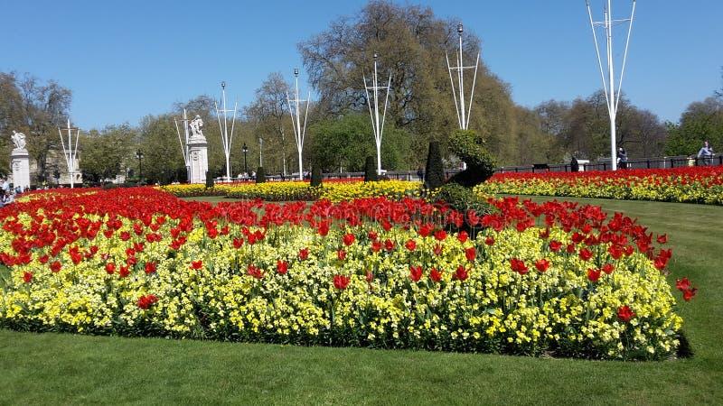 Сад Лондон стоковые фотографии rf