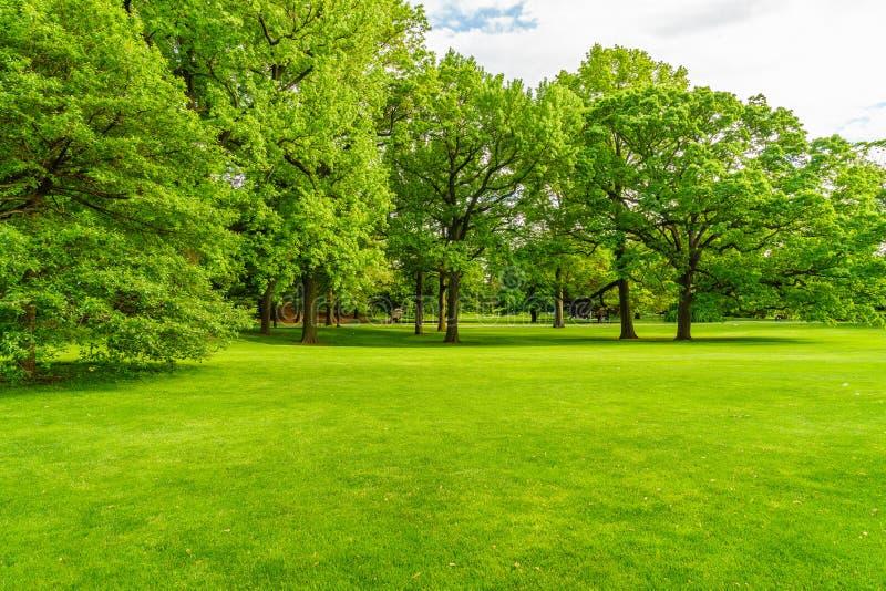 Сад Нью-Йорка стоковое фото rf