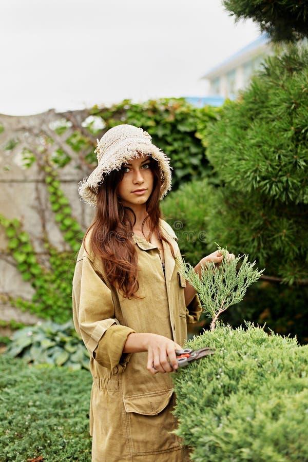 Садовник девушки в одеждах и соломенной шляпе деятельности режет scissoors сада вечнозеленые стоковое изображение rf