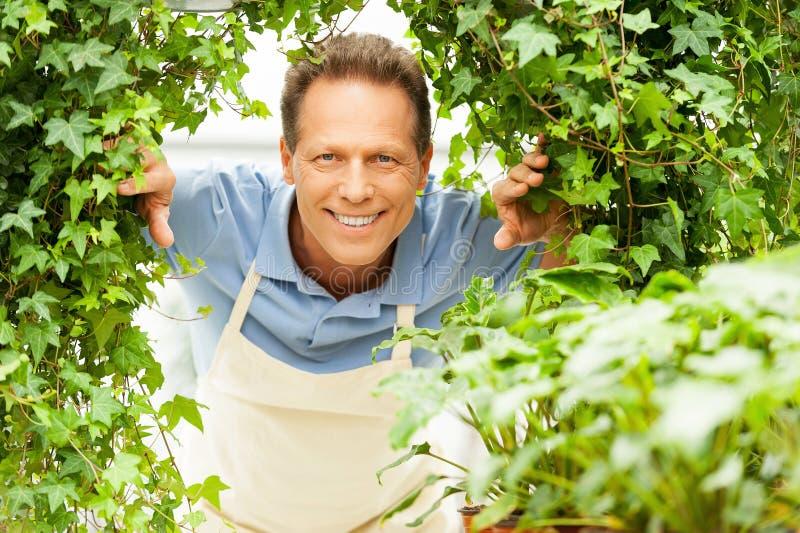 Download садовник счастливый стоковое изображение. изображение насчитывающей environmental - 40586301