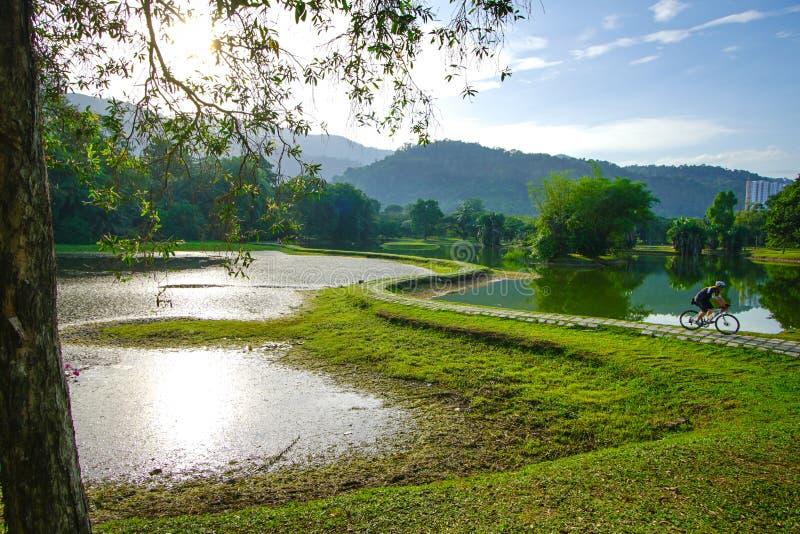 садовничает озеро taiping стоковая фотография