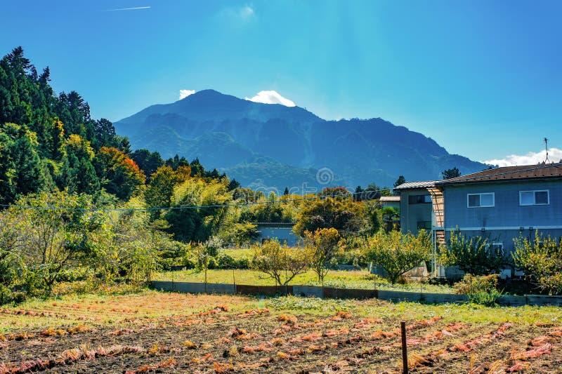 Садовничайте на загородном доме около городка Nikko, Японии стоковая фотография
