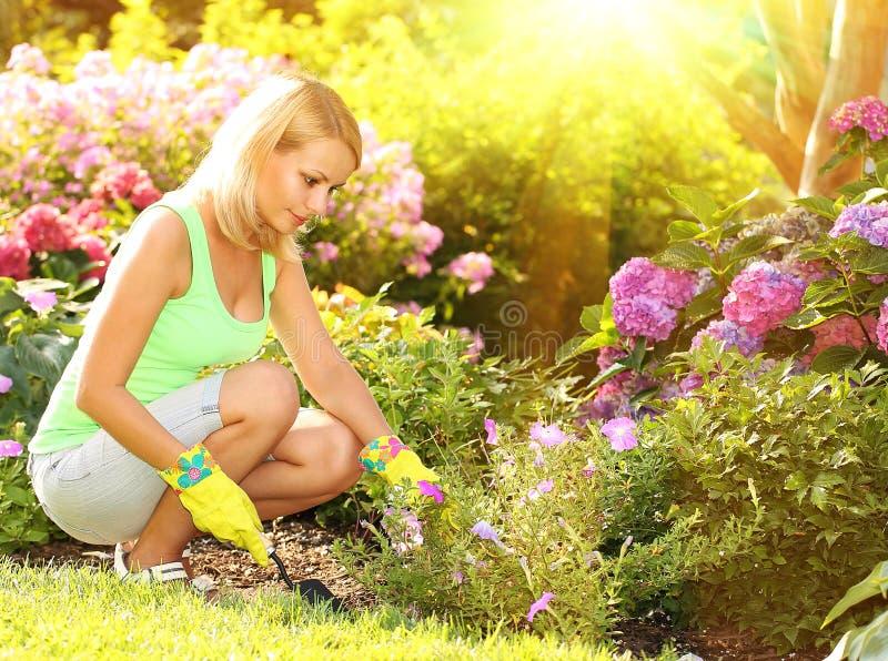 Садоводство Белокурая молодая женщина засаживая цветки в саде стоковое изображение