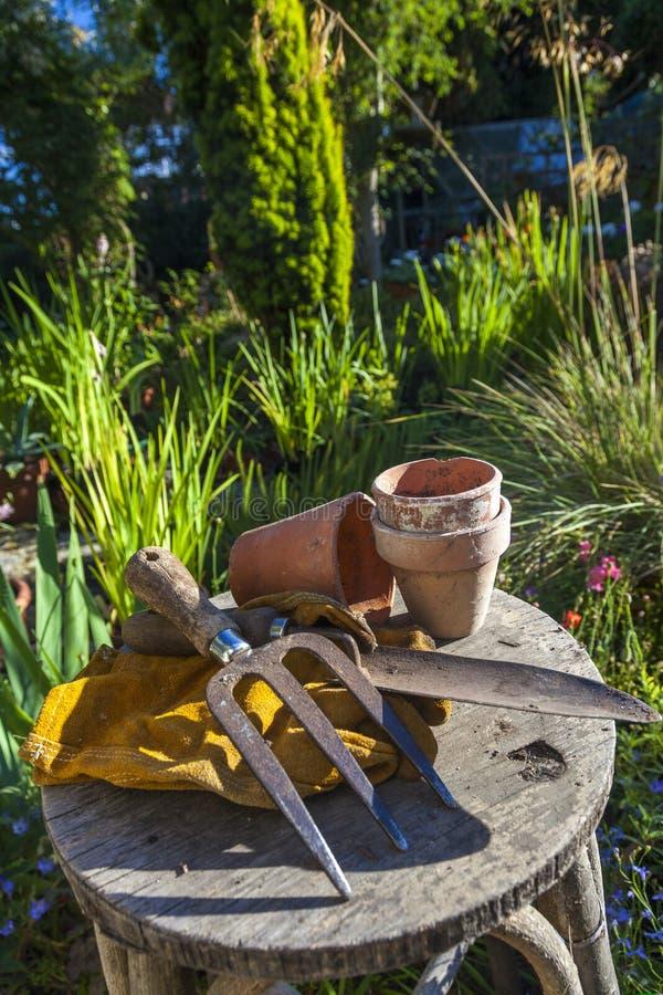 Download Садоводство стоковое фото. изображение насчитывающей парник - 33728238
