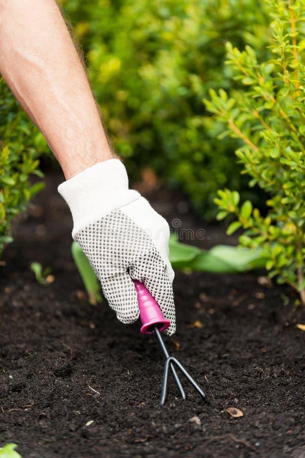 Download Садоводство стоковое фото. изображение насчитывающей оборудование - 40586102