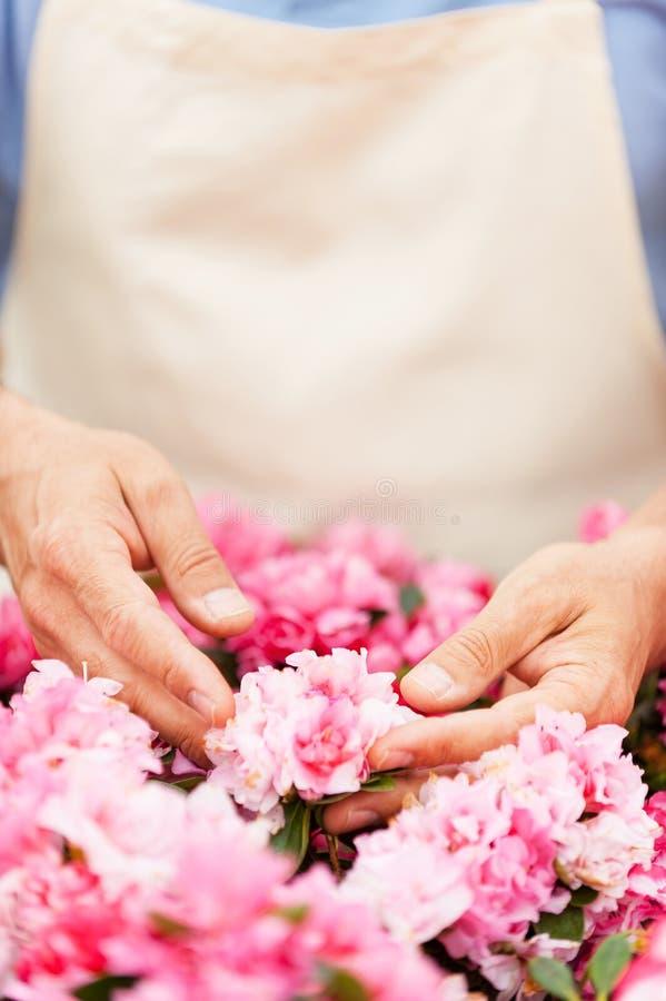 Download Садоводство стоковое фото. изображение насчитывающей индустрия - 40586284