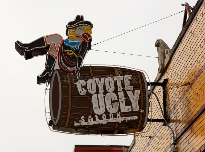 Салон койота уродский на улице Мемфисе Beale, TN стоковое изображение