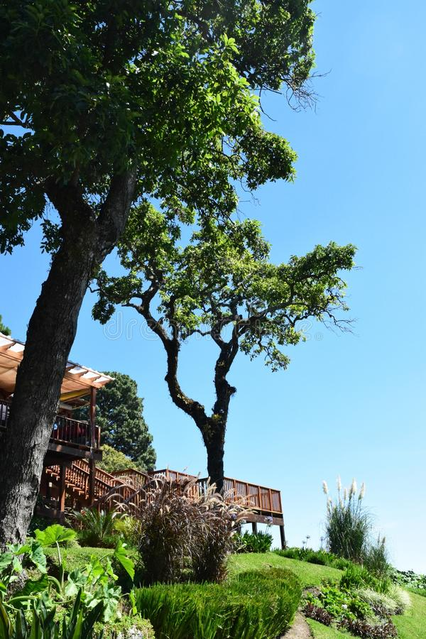 Сад ресторана на горе vulcano Сан-Сальвадора стоковые фото