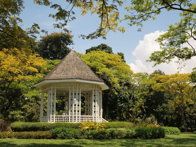 Сад Сингапура ботанический стоковая фотография rf