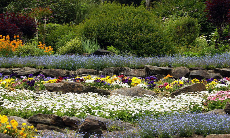 Сад утеса с цветя perennials стоковое фото rf