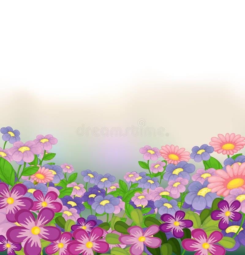 Сад цветастых цветков иллюстрация вектора