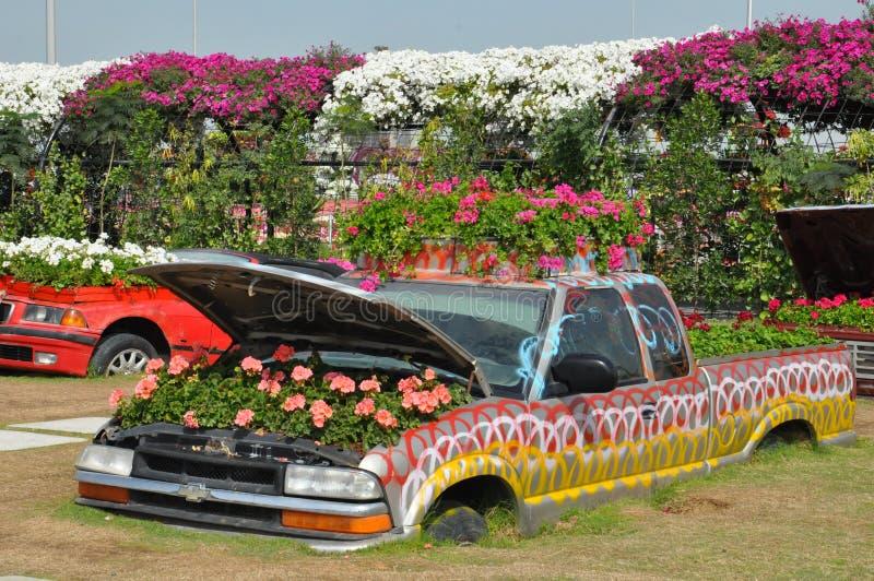 Сад чуда Дубай в ОАЭ стоковые изображения