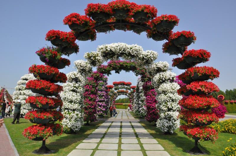 Сад чуда Дубай в ОАЭ стоковые фотографии rf