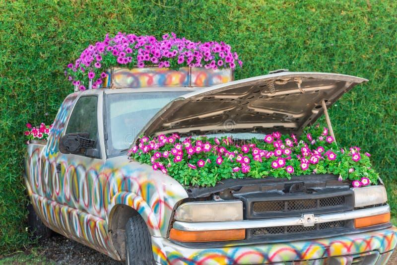 Сад чуда Дубай с над миллионом цветками стоковые изображения